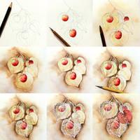 tips lantern flower hoozuki by Lovepeace-S