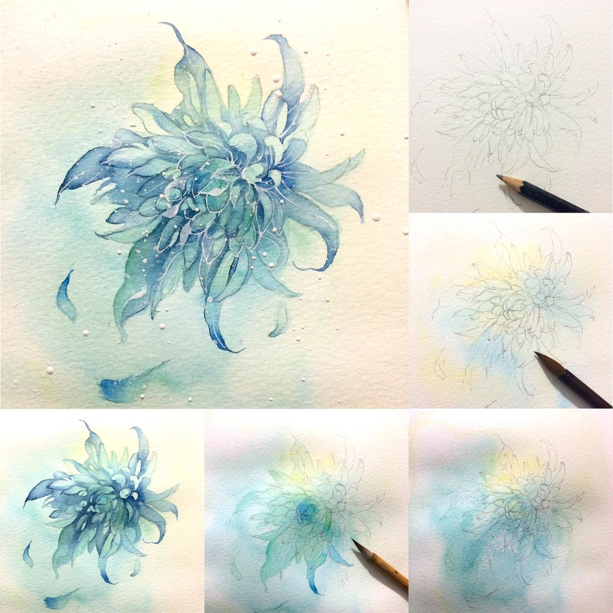 tips flower 5 - chrysanthemum by Lovepeace-S