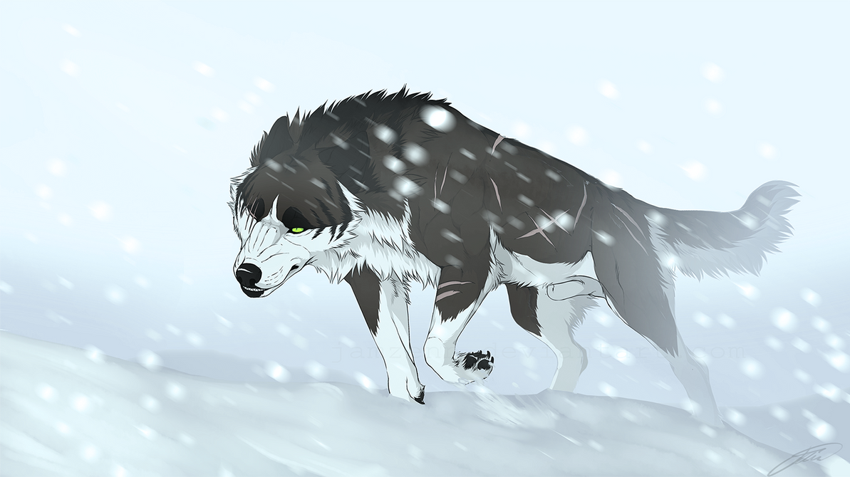 Snowstorm by jamzenn