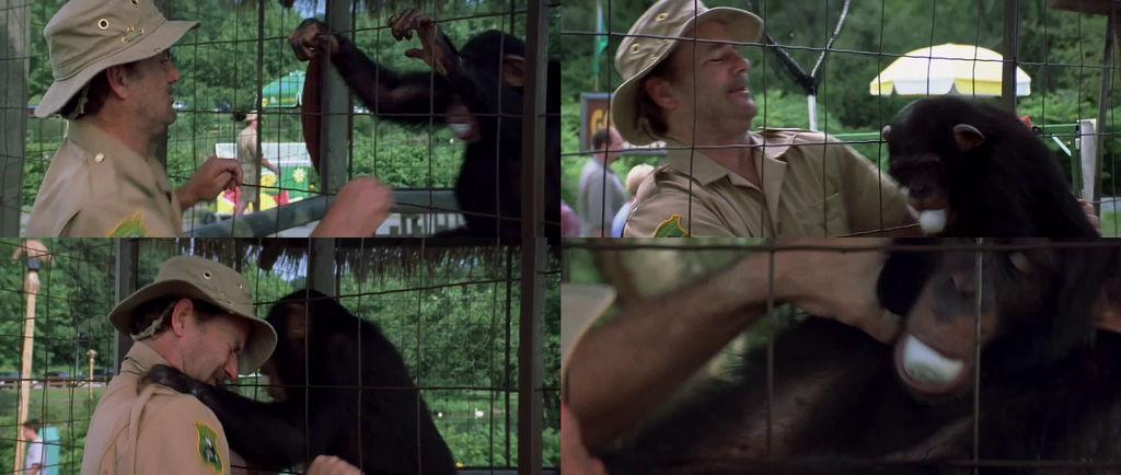 Frank vs The Monkey For The Egg (Osmosis Jones)