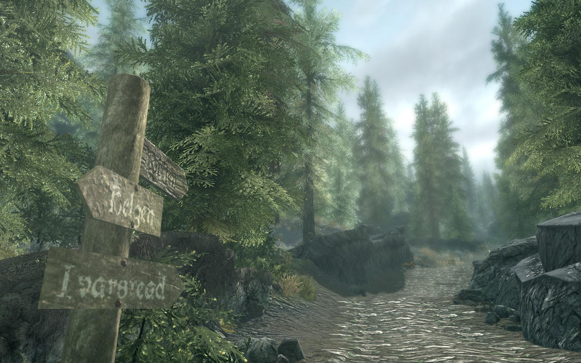 A look on the road ahead... by Sirhardcoreelite