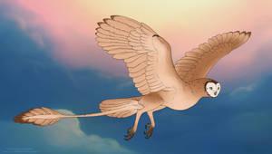 Murderbird 516