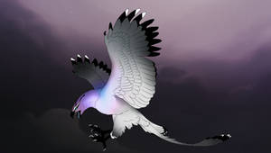 Dracostryx 12894