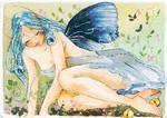 Nigra fairy