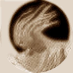 randyprice's Profile Picture