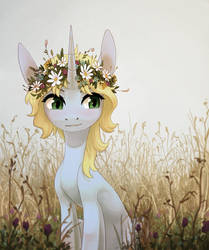 Pony in a wreath (ych)