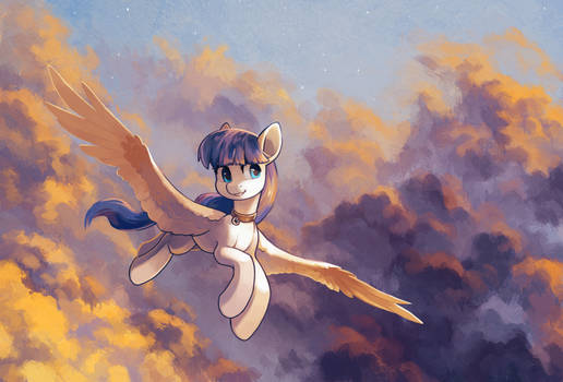 Sunset clouds (comm)