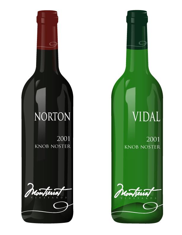 Montserrat Wine Bottles by brandimillerart