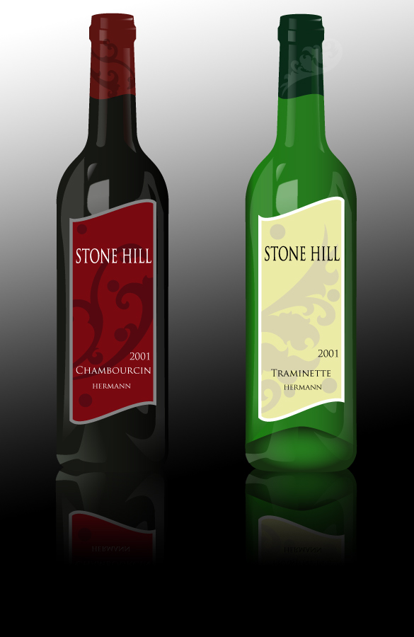 Stone Hill Wine Bottles by brandimillerart