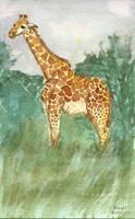 Giraffe by brandimillerart