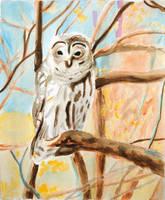 Owl by brandimillerart