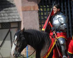 The Good Knight by brandimillerart