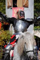 Chaotic Knight by brandimillerart