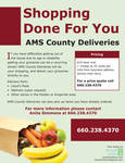 Grocery Delivery Flyer by brandimillerart