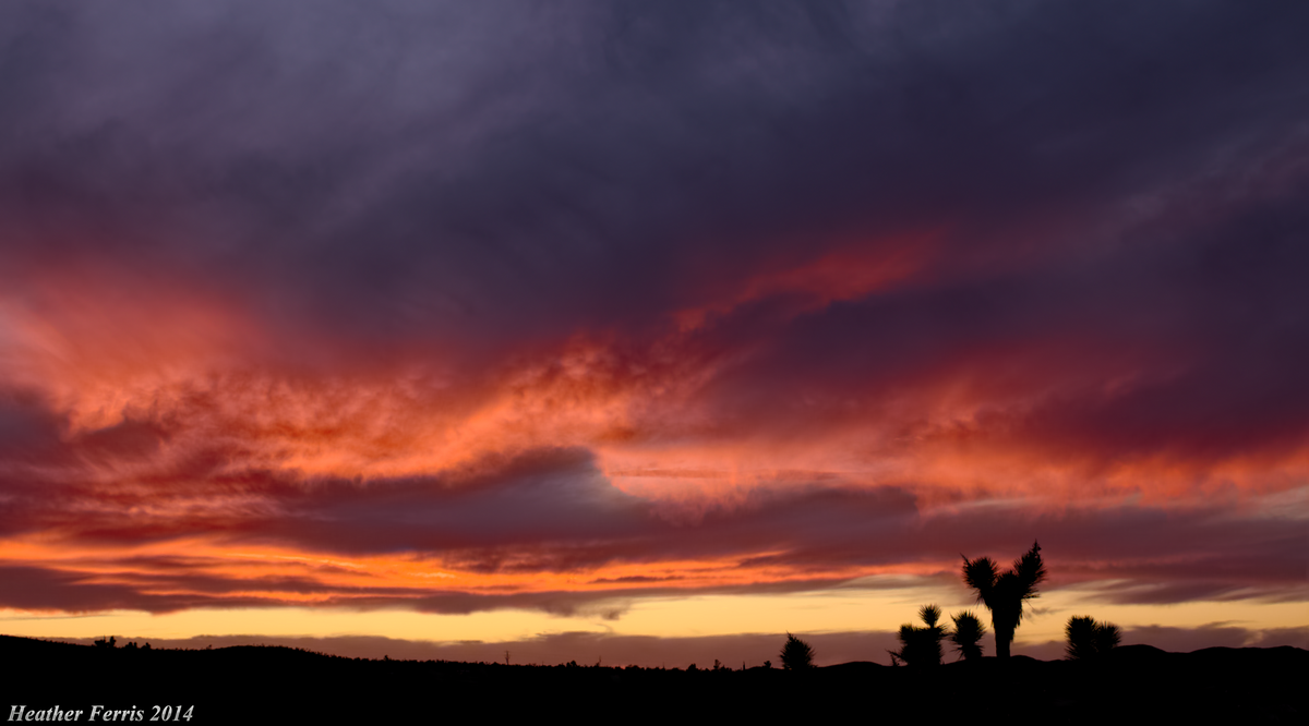 Sunset in the Mojave by Qtsy