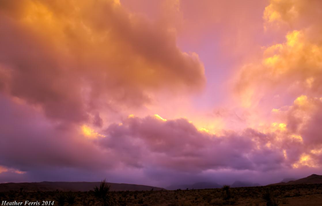 Desert Sunset by Qtsy