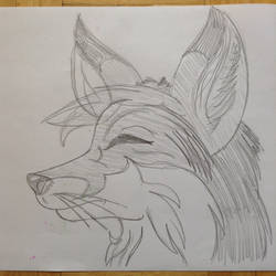 An old fox Sketch by FoxShed