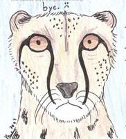 Leopard - bye by melydia