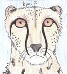 Leopard - bye
