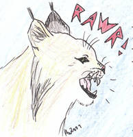 Lynx - rawr by melydia