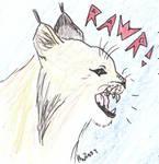 Lynx - rawr