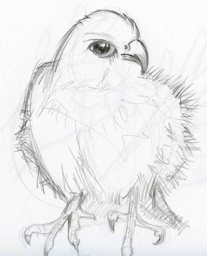 Pencil sketch animals by paulhebron
