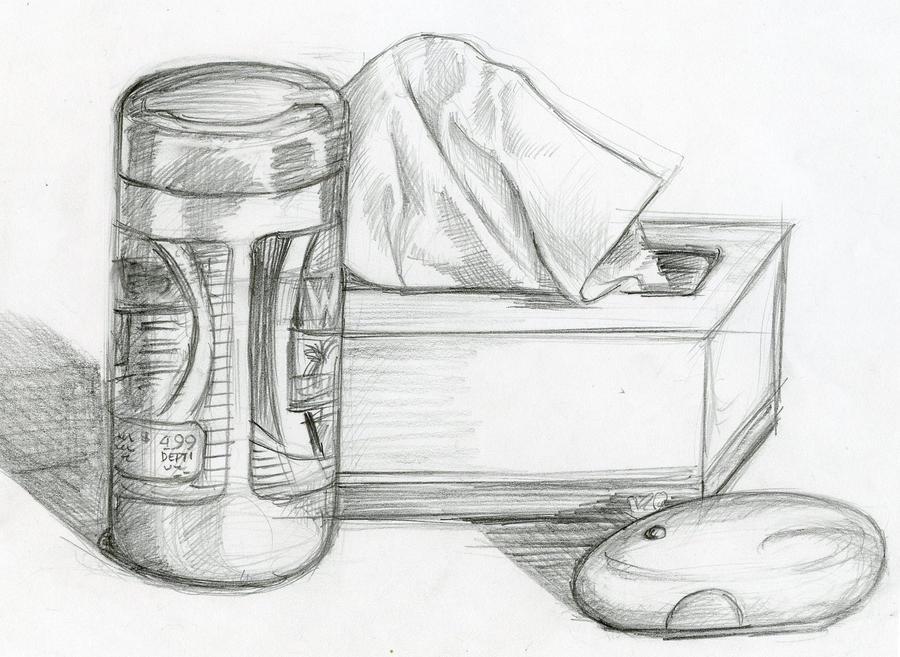 Pencil Sketch Still Life By Phebron On DeviantArt