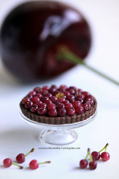 1:12 scale Cherry and Chocolate Tart