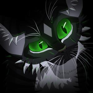 cometspirit's Profile Picture