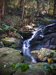 Forest Stream by Juri-Nyan