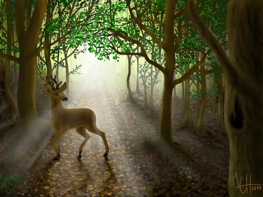 Good Morning Light by LisaKillings