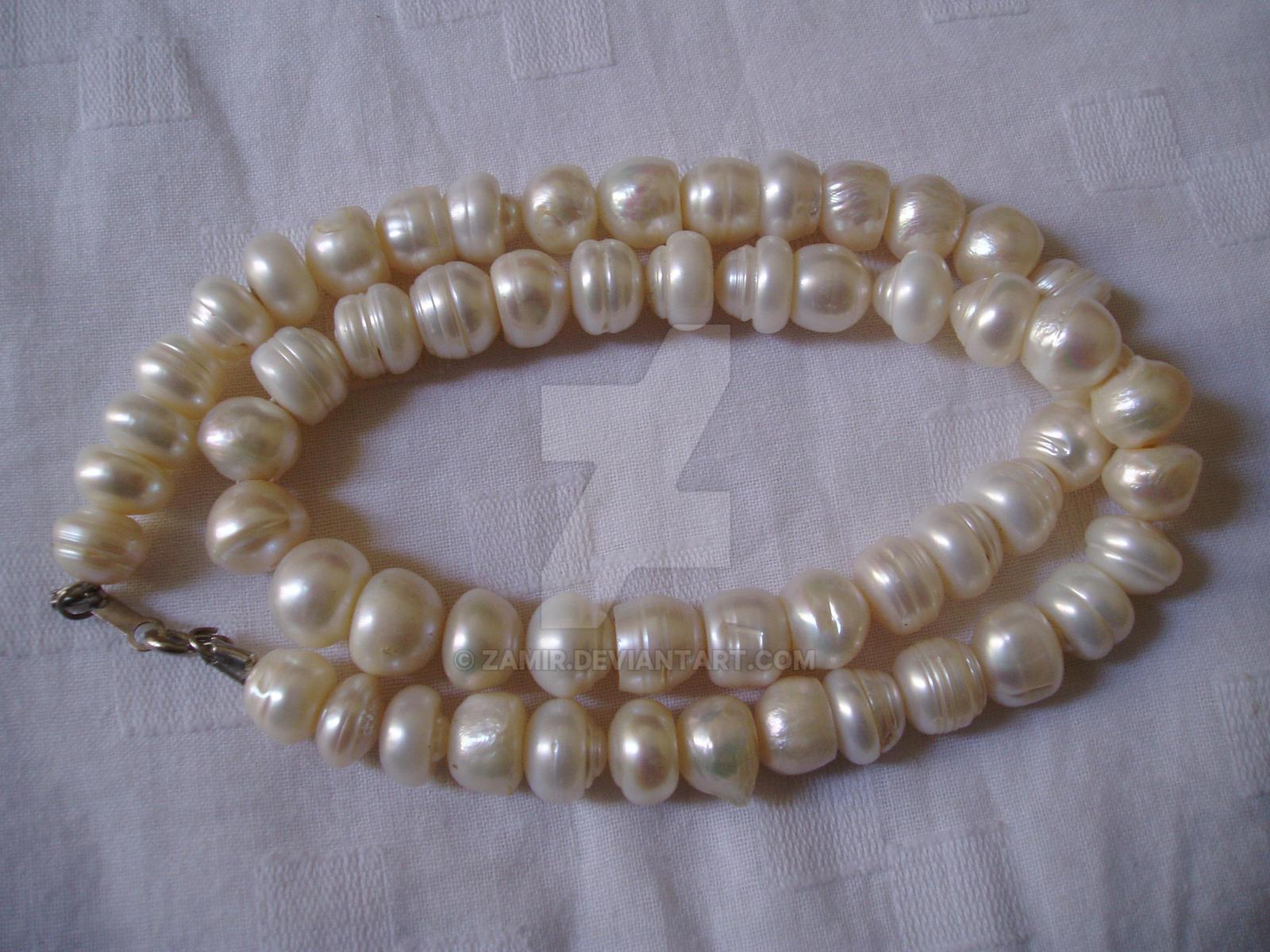 Pearl by zamir