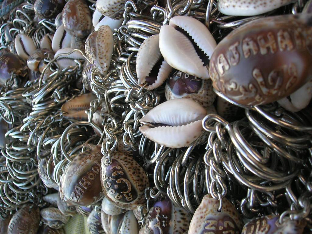Snail Shell by zamir