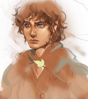 Frodo junk