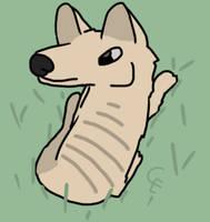 Thylacine sitting by CrookedEmerald