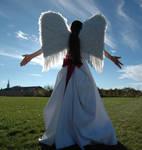 Angel 52