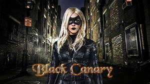 Black Canary wp