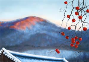 Winter Persimmon