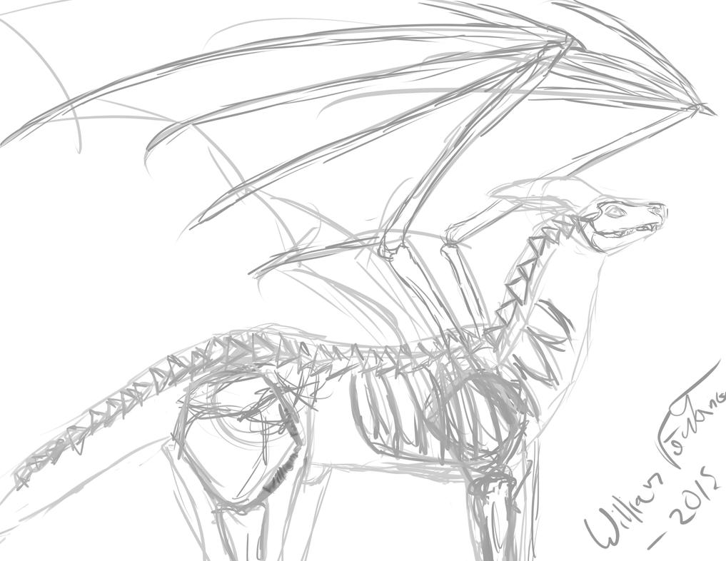 Theoretical Dragon Anatomy according to me by willplay1a
