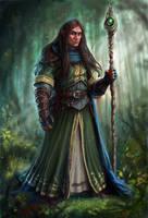 Half-Elf Wizard by joeshawcross