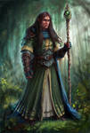 Half-Elf Wizard