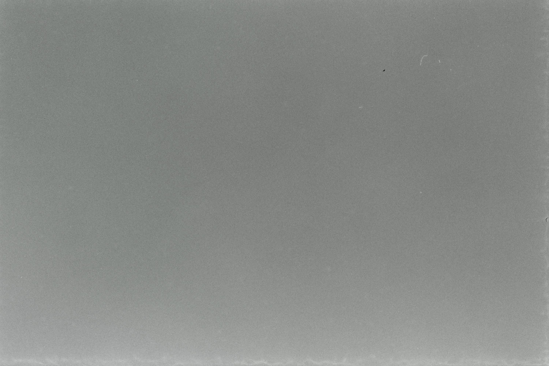 Kodak T-Max 400 Texture