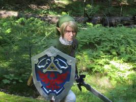 Fighting among ferns - Twilight Princess Link by Rinkujutsu