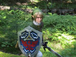 Fighting among ferns - Twilight Princess Link
