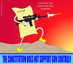 The Constitution Does Not Support Gun Control