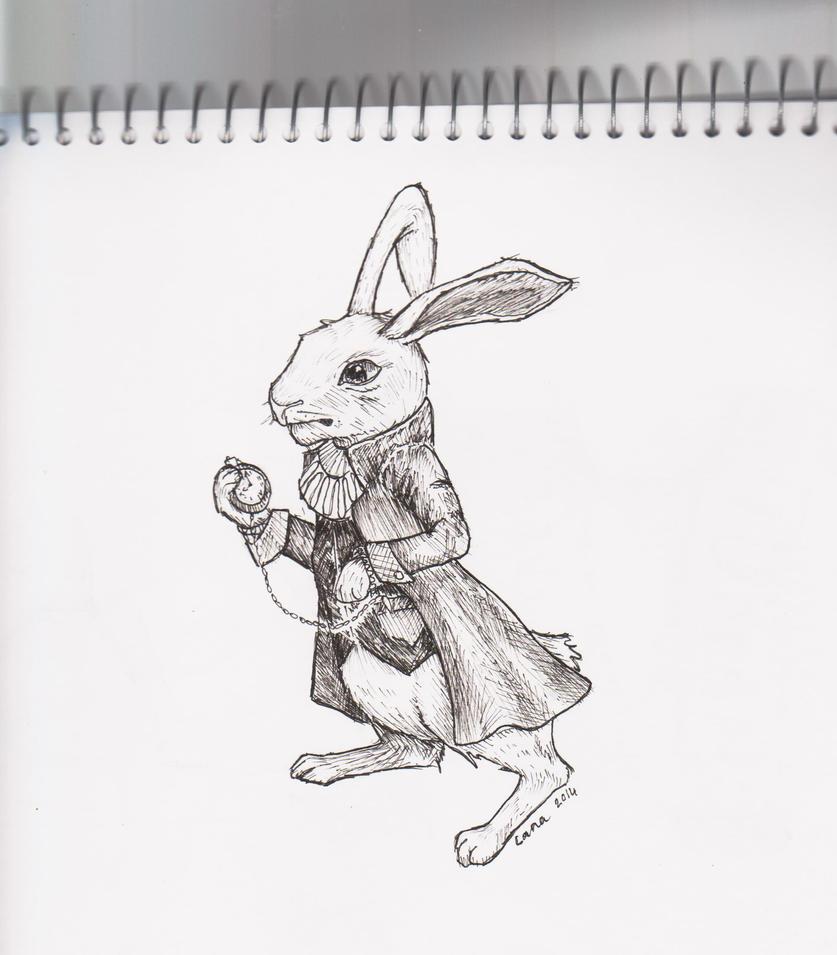 Mr Rabbit, Alice in Wonderland by sempeternally on DeviantArt