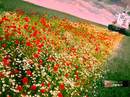 Peace, love and Bioenergy by Adisiat