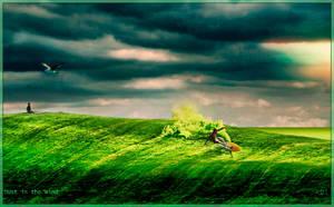 Dust in the wind... by Adisiat