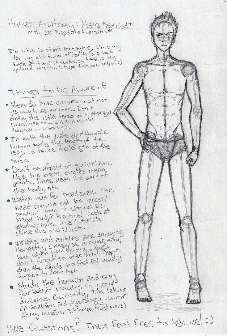 Male Anatomy Tutorial EDITED by shoujoartist on DeviantArt