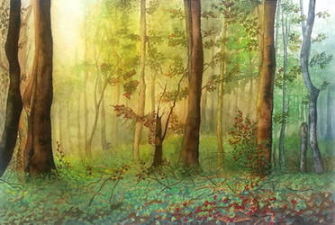 Forest by rougealizarine